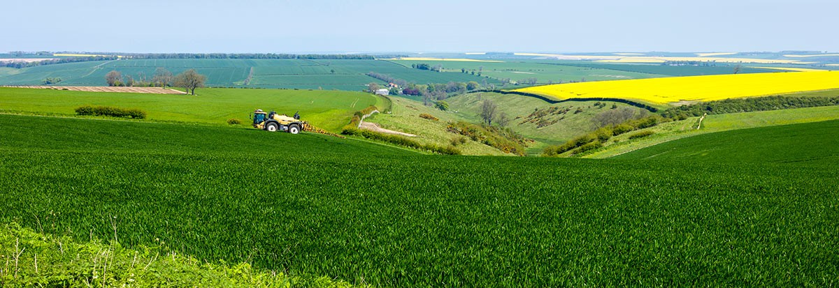 The Yorkshire Wolds Nearby